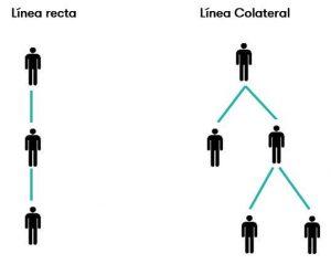 parentesco línea recta y línea colateral